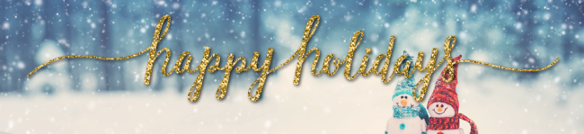 Seasons Greetings Banner - No Text